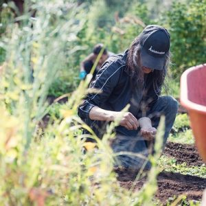 Racial Equity and Food Systems Resources